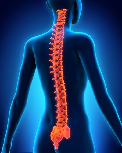 Is Your Spine at Risk to be affected by Arthritis?